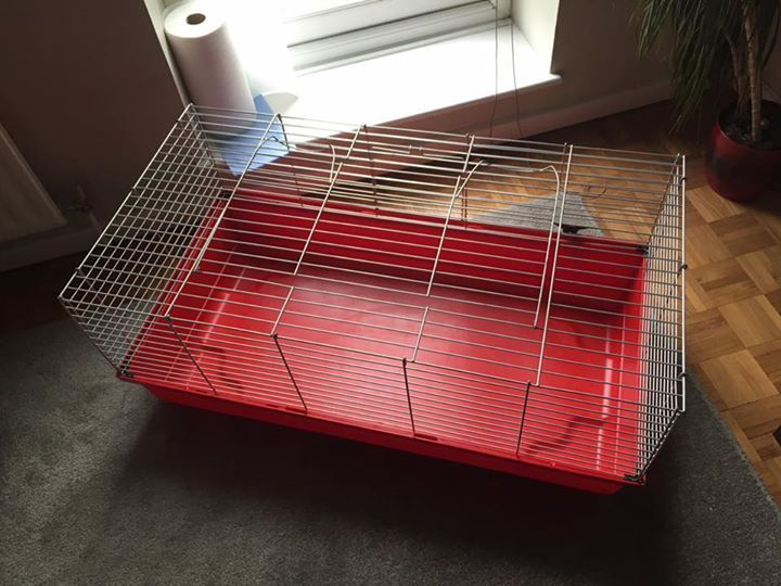 Pet Cage - good condition small pet cage suitable for small pets