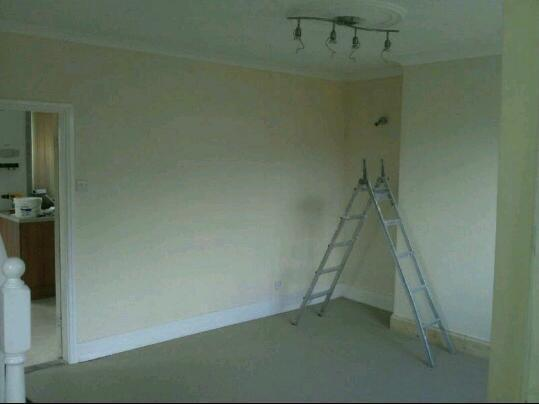 Property Renovation and Painting & Decorating