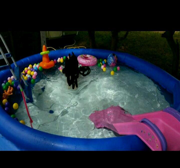 10ft above ground bestway swimming pool