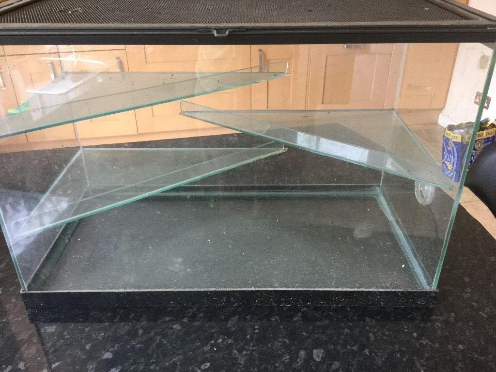 Gerbil/hamster glass home