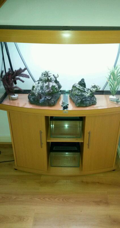 FLUVAL JEWEL BOW FRONTED 260LTR FISH TANK AND STAND IN BEACH