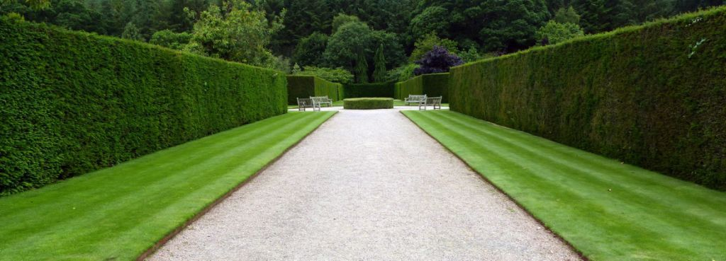 Garden Specialists: Lawn & Hedge Cutting Services