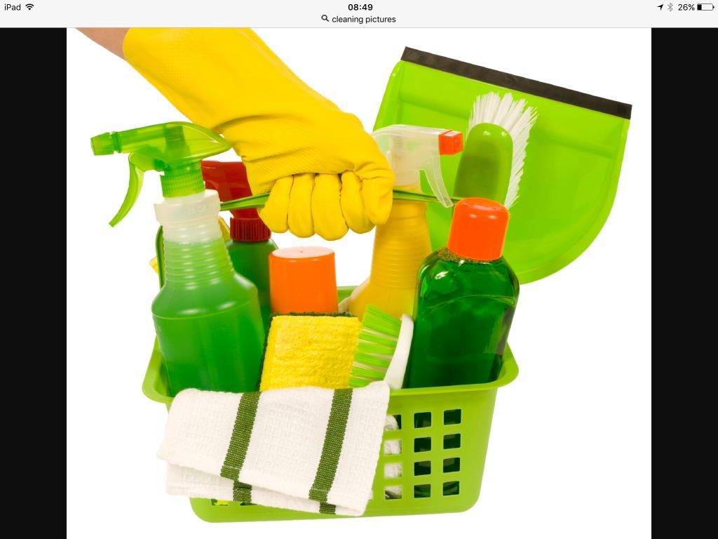 Janes domestic cleaning services