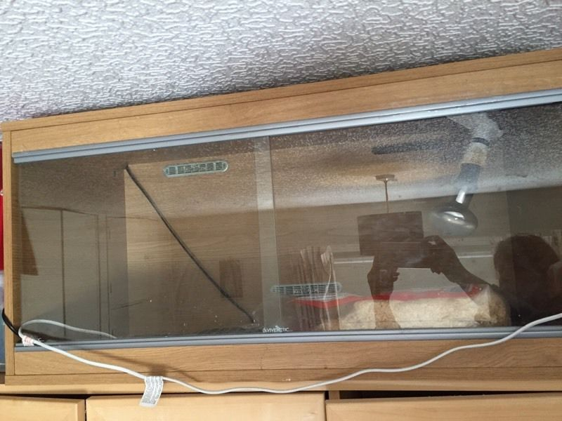 3 Foot Vivarium with heat mat, heat bulb plus extras