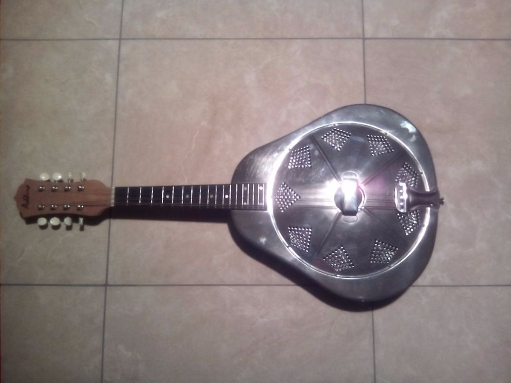 Ashbury Stainless Steed Rosonator 8 string mandolin