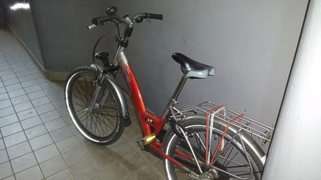 Alpina bicycle for sale