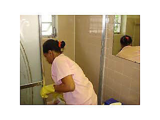 LADY CLEANING SERVICES