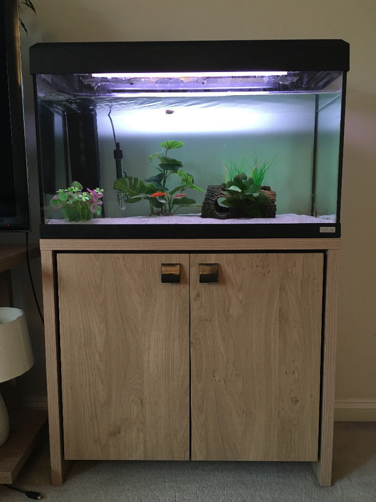 Fluval Roma 125 Fish Tank with cabinet