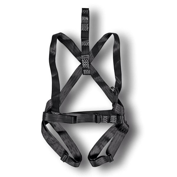 Wanted - body harness