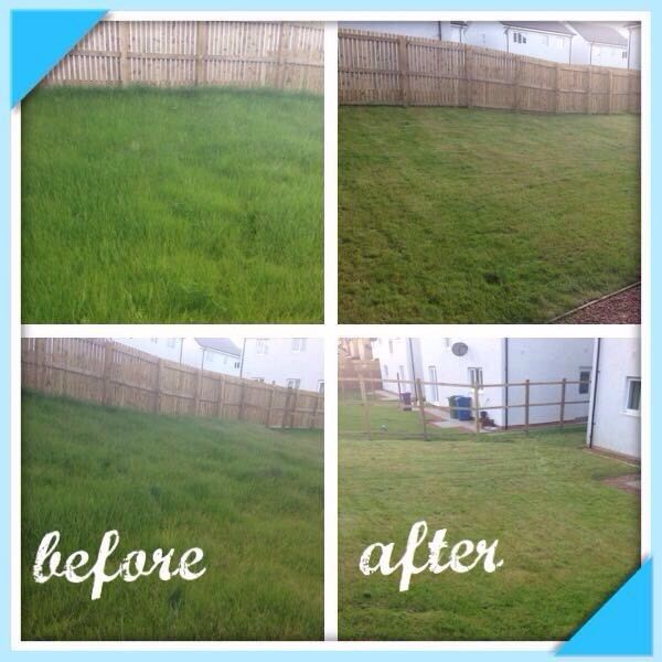 Grass cutting services and gardening maintenance