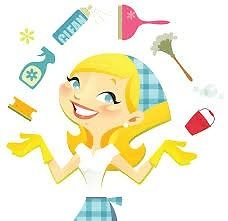 House Keeper/Cleaner Required for family home in Carryduff, plus City Center Apartment