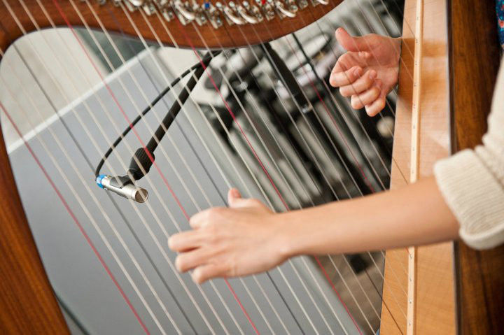 HARPIST AVAILABLE FOR WEDDINGS AND FUNCTIONS ACROSS NORTHERN IRELAND