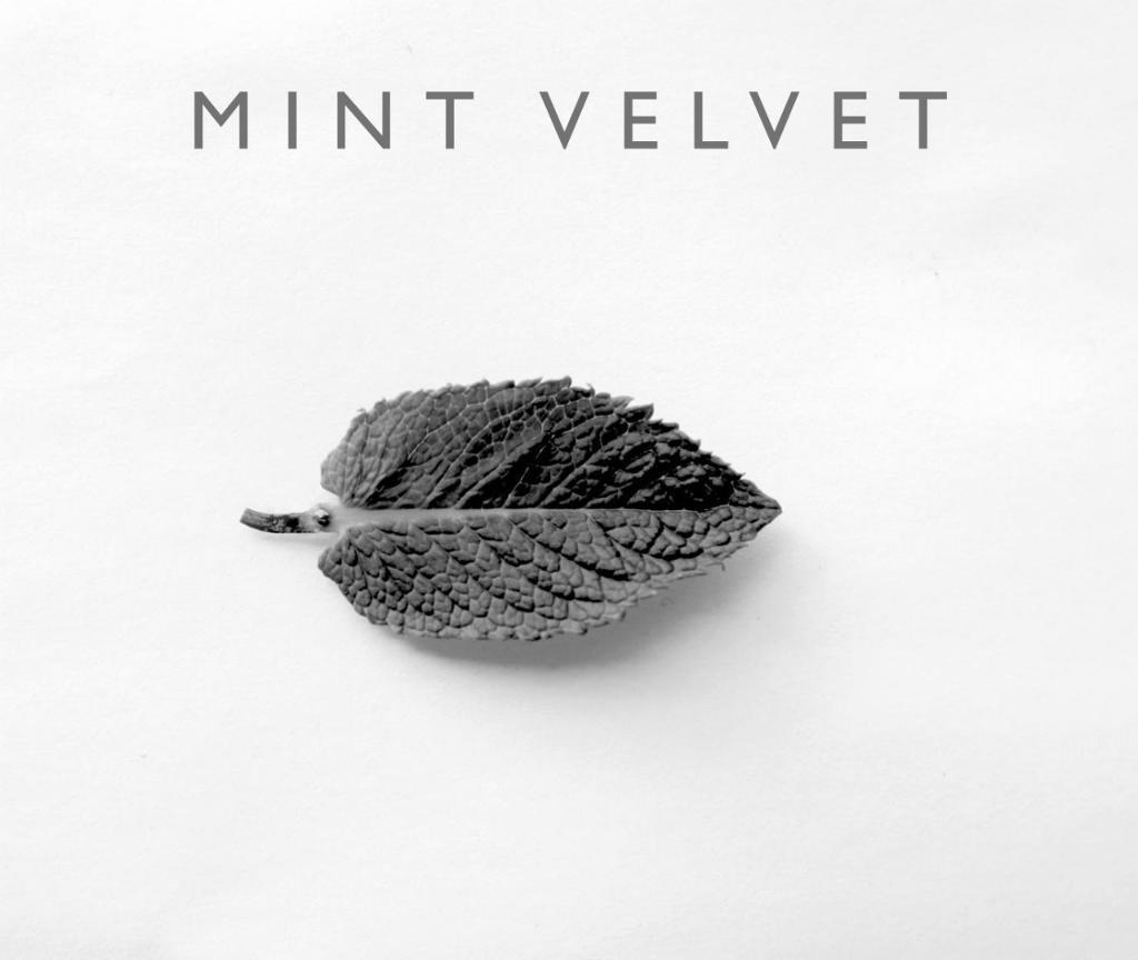 Mint Velvet, Henley on Thames Boutique- Style Advisor (Part-Time, Weekend)