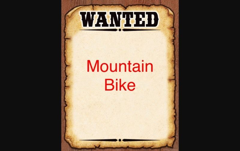 WANTED MOUNTAIN BIKE