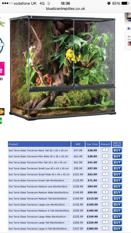 Eco terra terrarium large x-tall