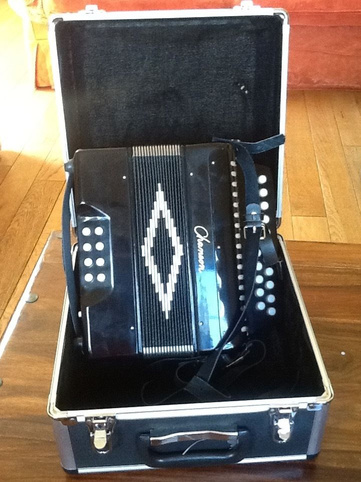 brand new accordeon (B/C) with case (bought from matchetts Belfast)