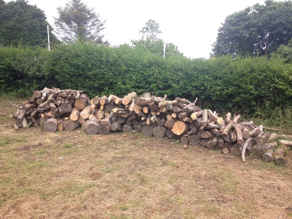 Large amount of wood available