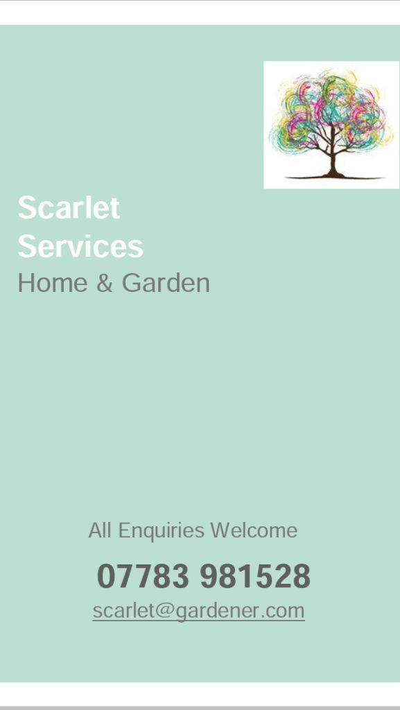Scarlet Services Home & Garden, Domestic & Commercial, Cleaner & Property Maintenance Providers