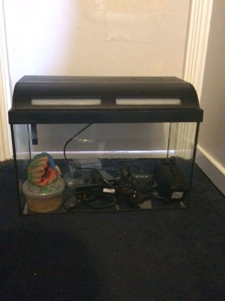 35l tropical fish tank