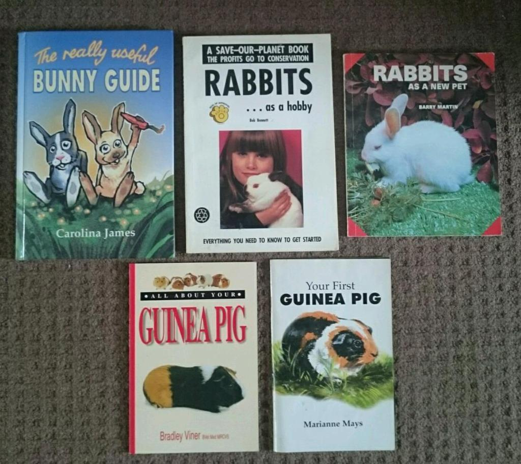 Rabbit /Guinea pig books