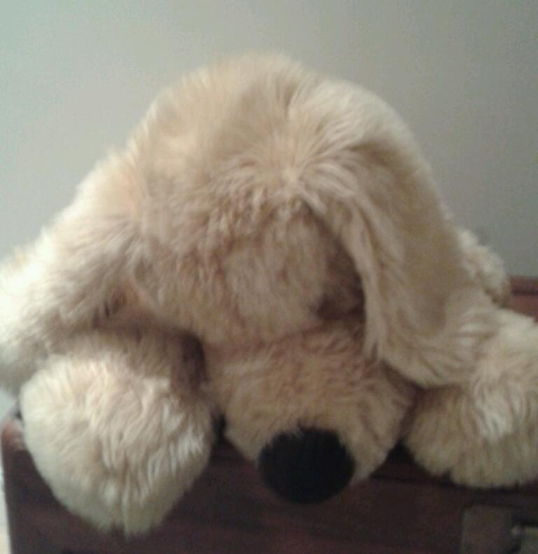 Very Large 'John Lewis' Floppy Dog Stuffed Animal