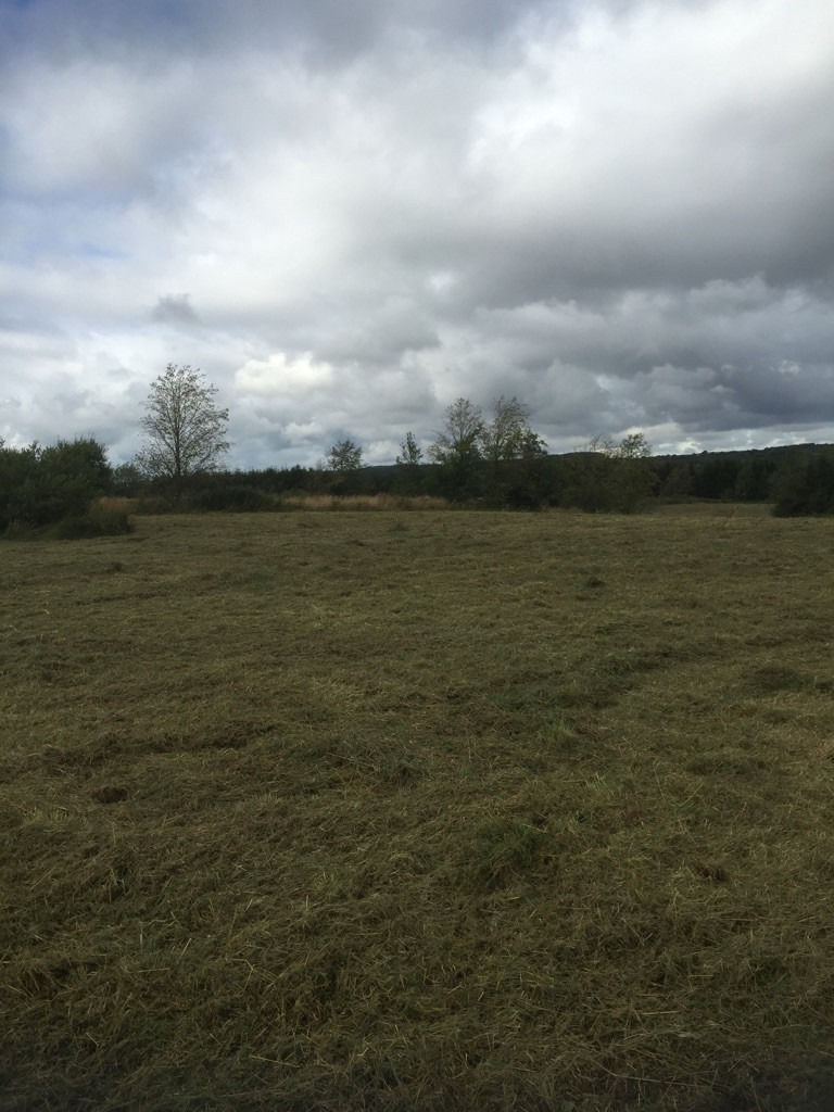 25.5 Acres of aggricultural land for sale at Breich, West Lothian
