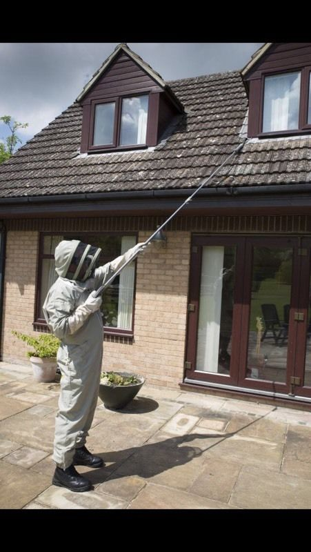 Wasp Nest Removal Service.