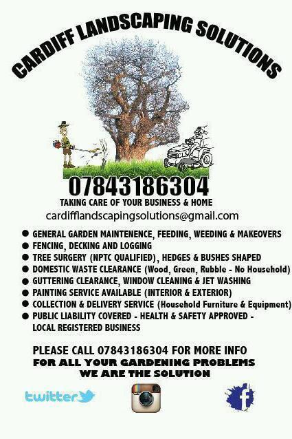 Gardeners. Garden maintenance services