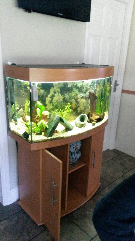Jewel 180L Fish Tank to include Fluval External Filter