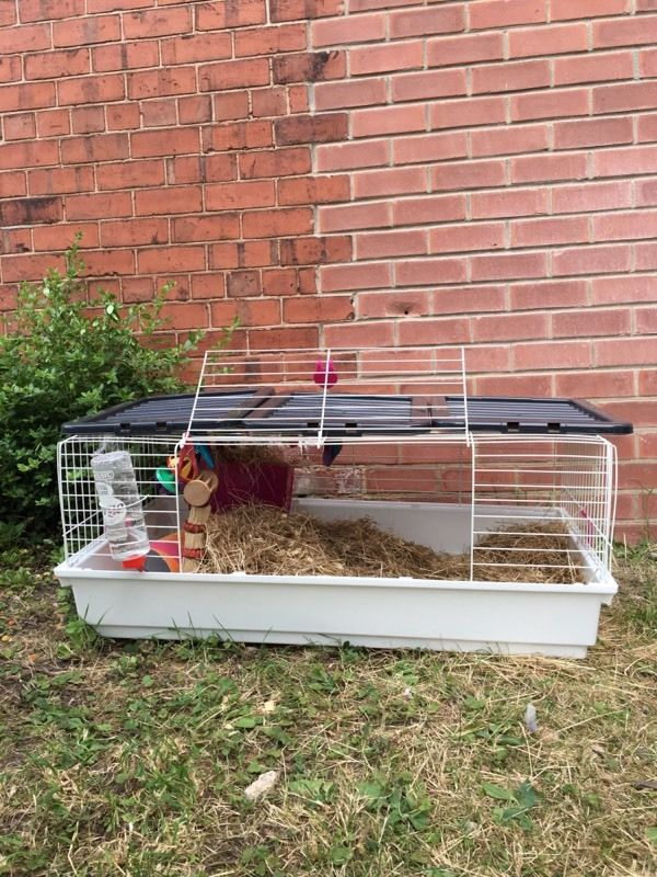 Cage+bottle hay food bowl toys