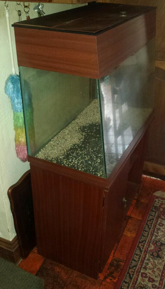 Fish tank and lots of accessories