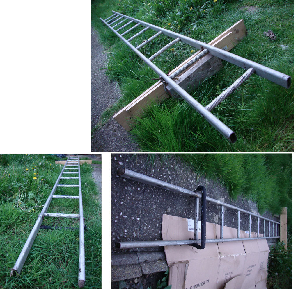 Single Ladder 3.66m Length X 0.29m Width 11 rung, light and durable. Good condition.