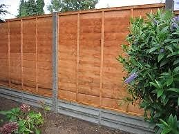 Davies Fence painting services