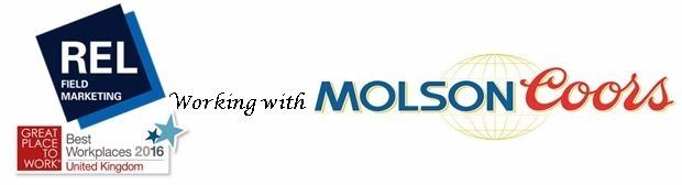 Data and Insight Manager - Molson Coors