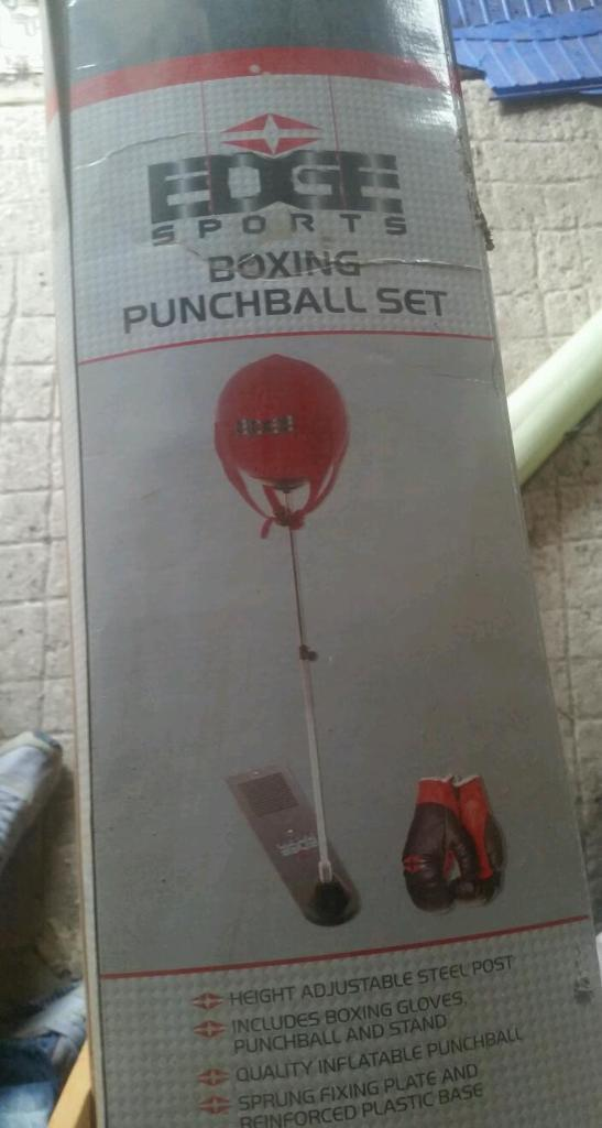 Boxing punchball set with gloves