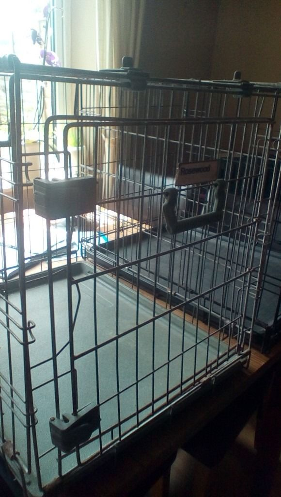 Dog crates, cat carrier