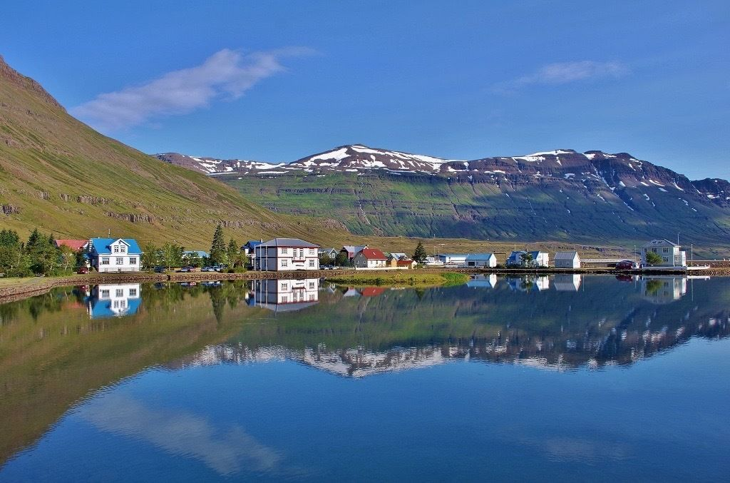 Looking for cook in the most beautiful town in Iceland