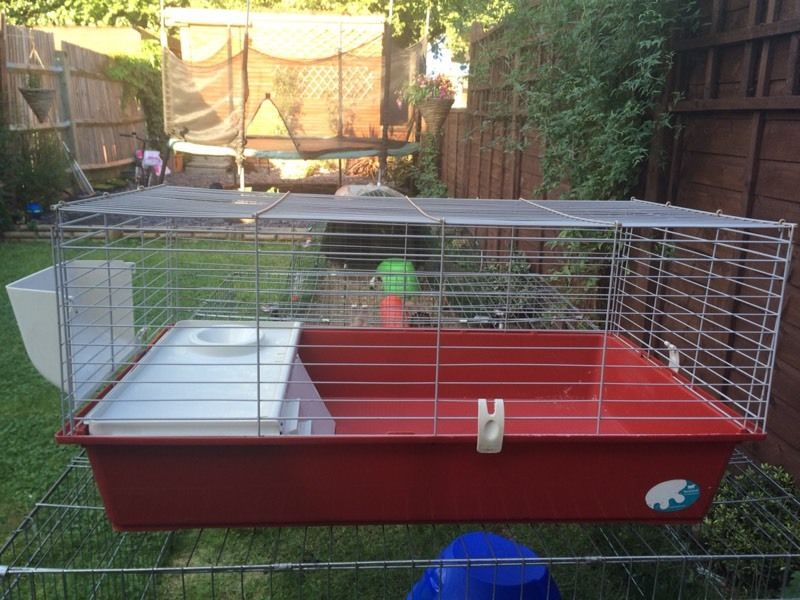 Ferplast indoor guineapig cage