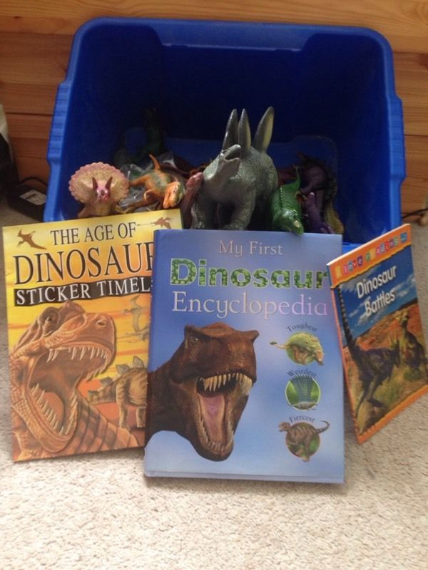 Lots of Dinosaurs and books