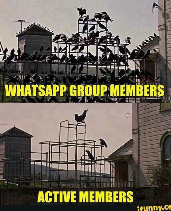 WhatsApp banter NI