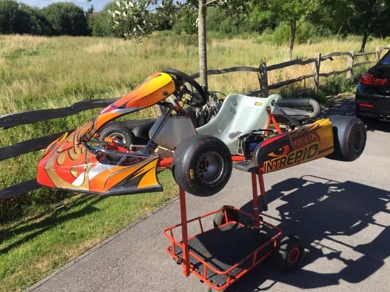 Intrepid Cruiser Rotax Max Senior