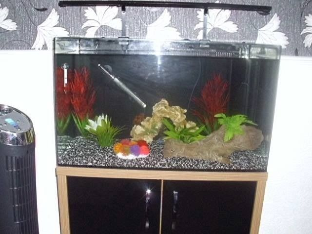 FISH TANK AND STAND ONLY 4 WEEKS OLD(IMMACULATE CONDITION)