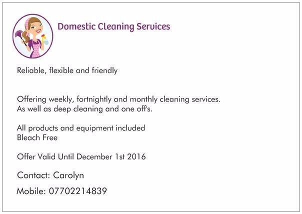 Domestic Cleaner, Taunton and surrounding areas