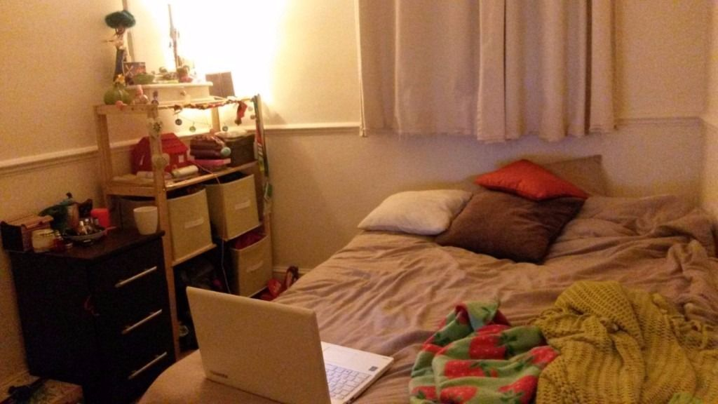 DOUBLE ROOM TO RENT IN PUTNEY FOR SEPTEMBER!