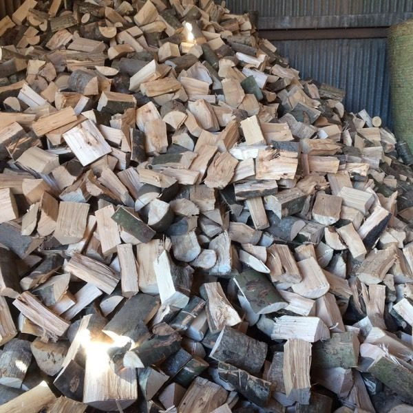 Firewood logs softwood and hardwood sticks