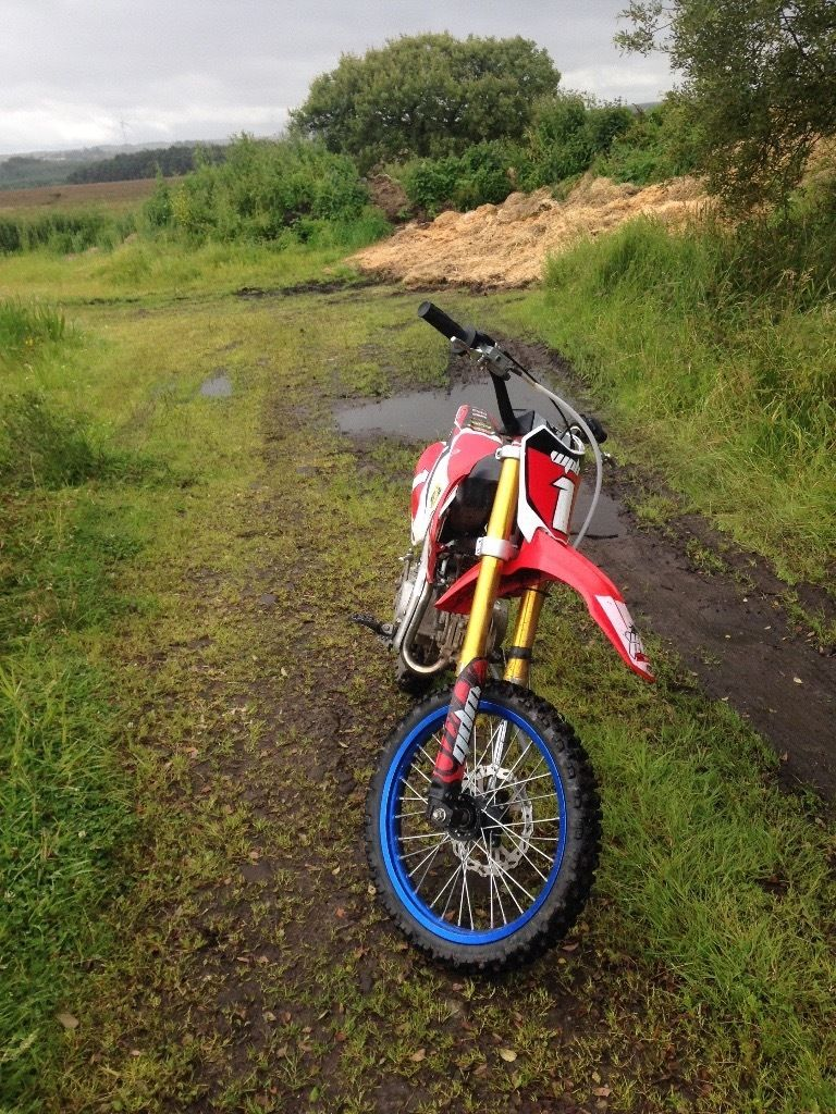 Welsh pit bike big wheel 2015 modle 140cc race tuned fast bike 650