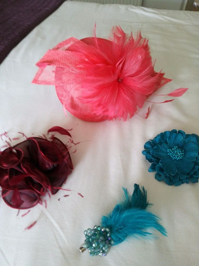 Fascinators & hair clips