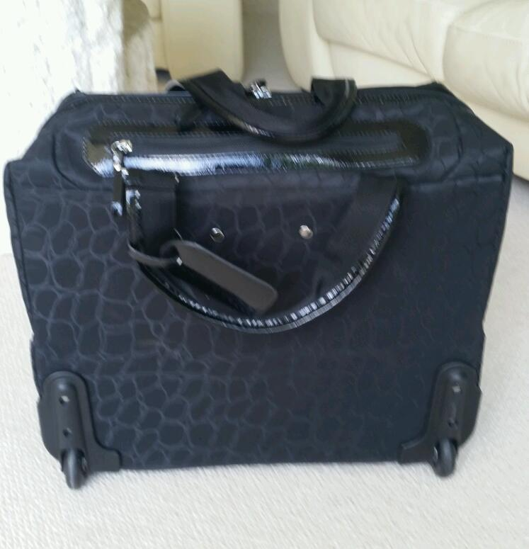 Travel bag / laptop / notebook case