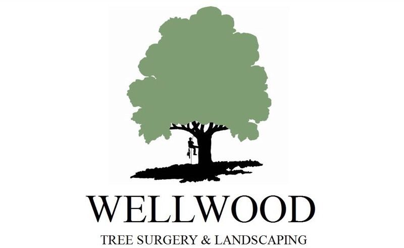 Tree surgery and landscaping free quote just call