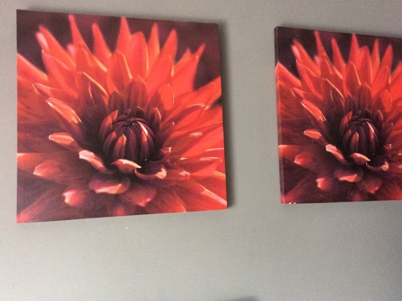 Three canvases